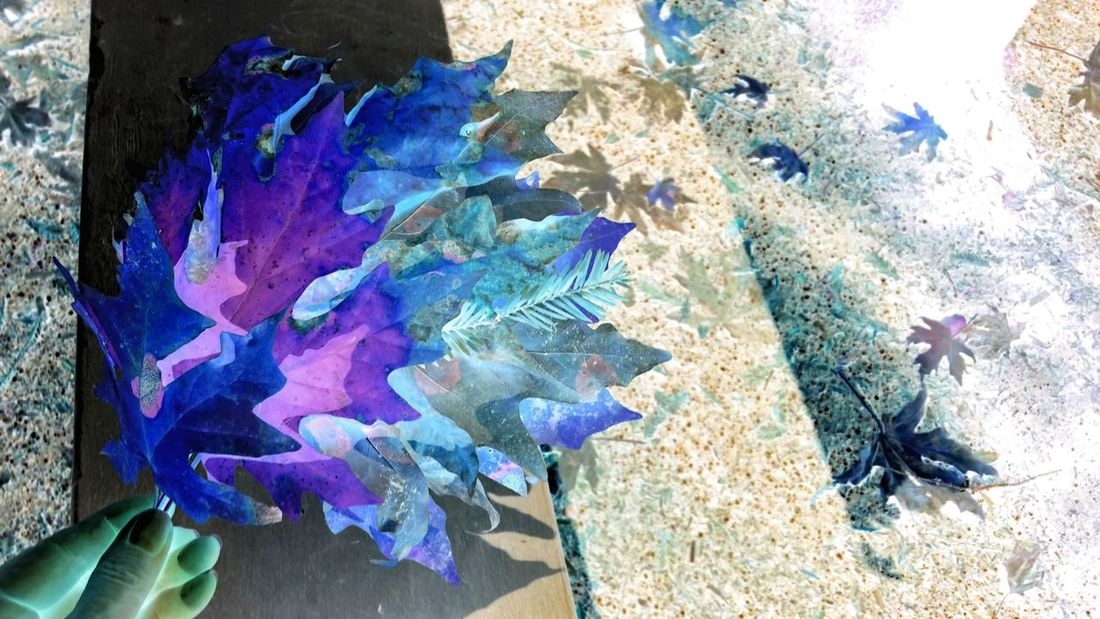 Abstract. Blue, purple & turquoise green. Leaves of autumn. Hand in surreal lighting. Fine Art Blue Purple Tourquise Green Abstract Surreal Hand Fingers Left Justified Unusual Dramatic Leaves Layered Edge Scattered Countryside Backlit Watercolor Effect Zen Romantic Mysterious Dreamy Modern Vogue Reflected Light Multi Colored Abstract Close-up Modern Art