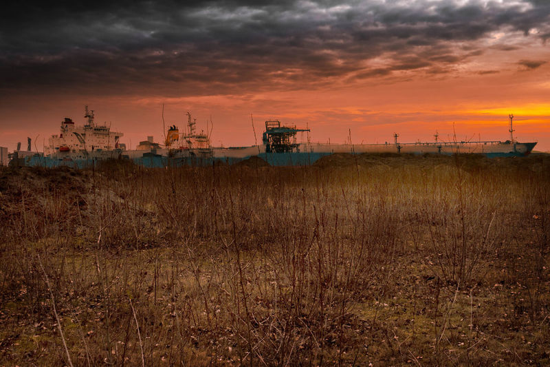 Bad Weather Crudetanker Early Morning Grass Hamburg HAMBURG ... Moin Moin Hamburg Harbour Hamburger Hafen Landscape Nature No People Oil Industry Oil Terminal Outdoors Schiff Schiffe Ship Sky Sunrise Sunset Tree Wasteland