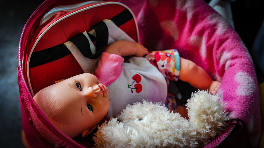 Doll And Soft Toys Inside Toy Bag