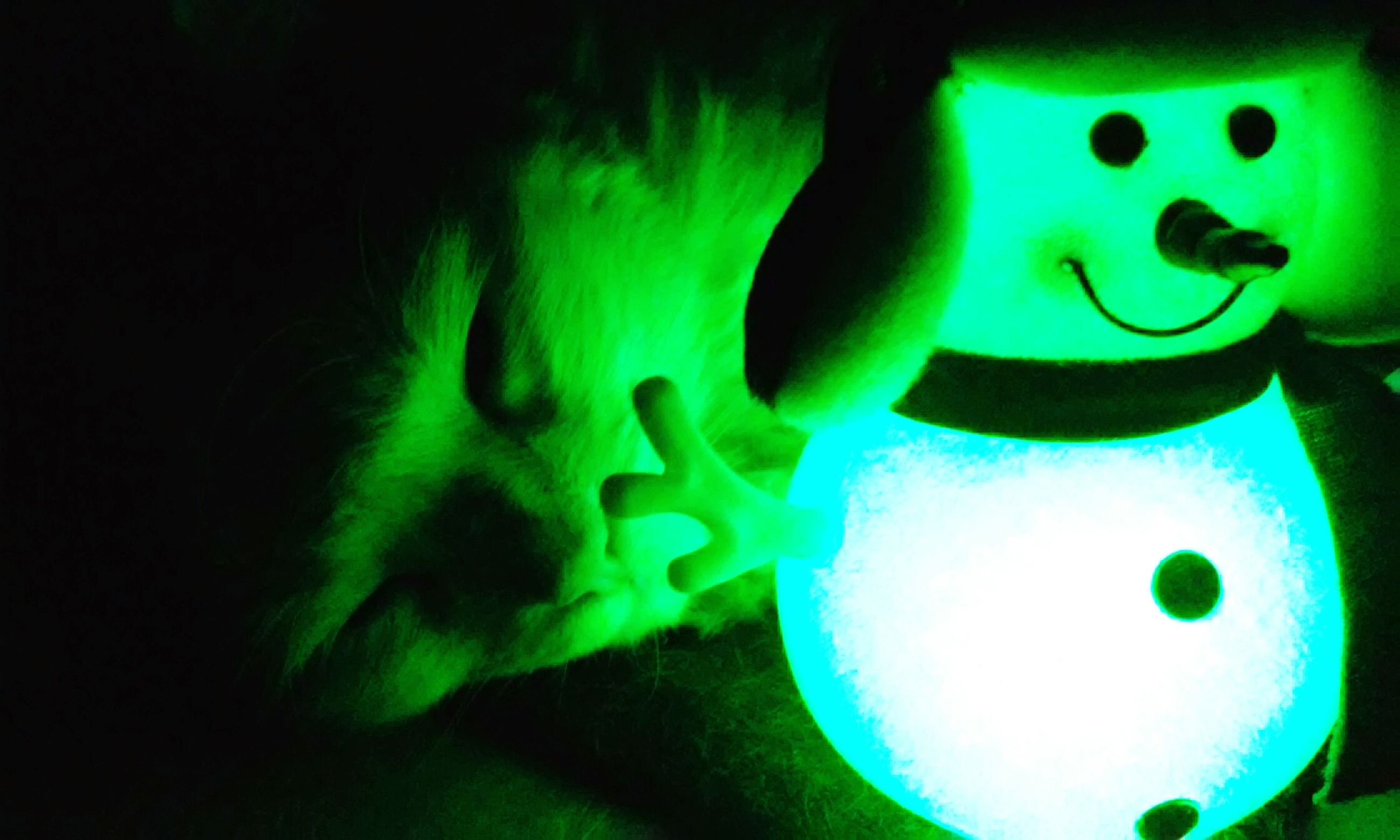 illuminated, indoors, creativity, art, human representation, art and craft, night, multi colored, animal representation, close-up, green color, toy, communication, arts culture and entertainment, text, neon, celebration, blue, glowing