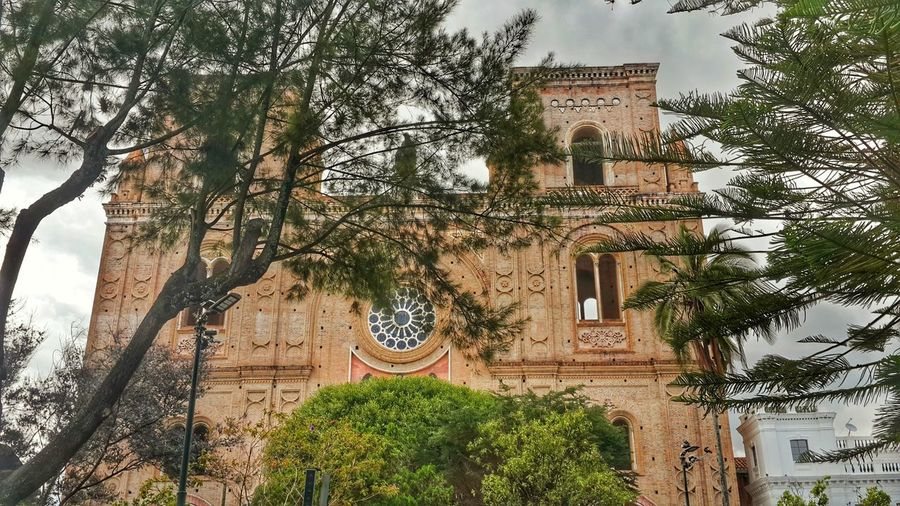 Cuenca-Ecuador #travelphotography #photography #photo #photos #pic #pics #TagsForLikes #picture #pictures #snapshot #art #beautiful #instagood #picoftheday #photooftheday #color #all_shots #exposure #composition #focus #capture #moment #EyeEmNewHere #photography #Nature  #beautiful #Paisaje #ecuadorian #streetphotography Tree Branch Sky Architecture Building Exterior Built Structure Plant Historic History Castle Ancient Archaeology Ancient Civilization Civilization