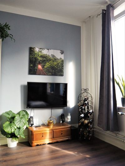 Domestic Room Furniture Home Home Interior Home Showcase Interior Houseplant Indoors  Wood Wood - Material