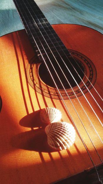Guitar Summer Music Conchiglie Shells Chords Tramonto