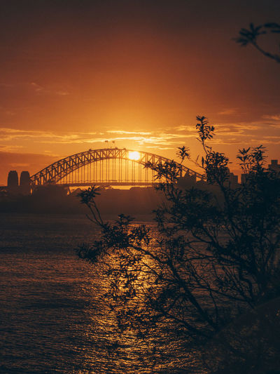 Sydney Harbour Bridge Sydney Australia Sky Sunset Tree Bridge Water Architecture Bridge - Man Made Structure Built Structure Orange Color Plant Nature Connection No People Scenics - Nature Transportation Silhouette Tranquil Scene Arch Bridge Sun Outdoors