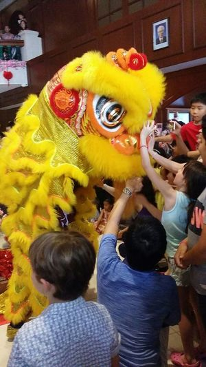 Kids love to Touch or Pat the Lion. Adults too! Lion Dance Audience Club Performance Chinese Custom Chinese Culture Chinese Tradition Singapore CNY Chinese New Year CNY2017 Streetphotography Sg_streetphotography Singapore