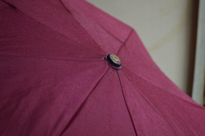 Rainy day red