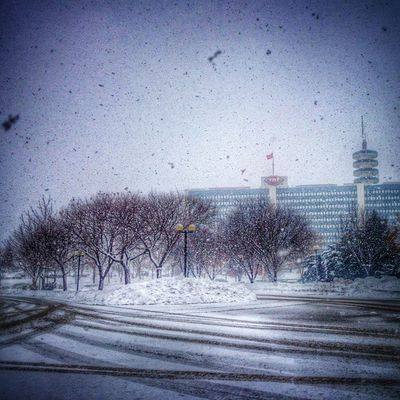 ❄⛄❄TRT'de Kış...❄⛄❄