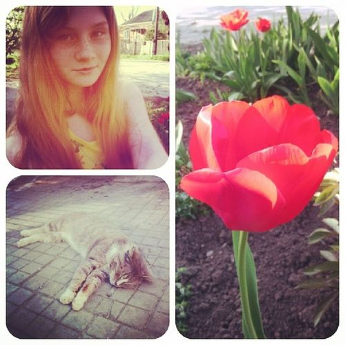 весна жара каайф ;))
