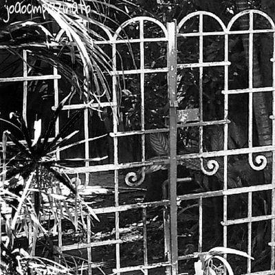 Gate Grimegate Rsa_preciousjunk Flaming_rust Trailblazers_urbex 80sixd Sundoors Door_filth Doorknobitry Ic_doors Portasejanelas Portaseportoes Kings_doorsandco Rsa_doorsandwindows Icu_doorsandwindows Ir_doorsandwindows Tv_urbex Streetphotography Urban Streetphoto_brasil Blackandwhite City Zonasul Saopaulo Brasil photograph urbexbrasil