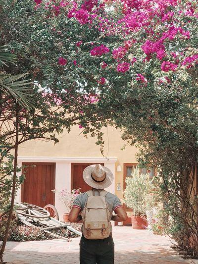 Man standing by flowering tree