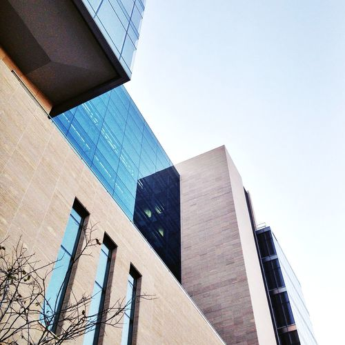 Architecture Blue Building Building Exterior Built Structure City City Life Clear Sky Day Development Directly Below Johannesburg Low Angle View Modern No People Office Building Outdoors Rosebank Sky Skyscraper Tall Tall - High Tower