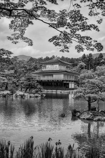 Water Outdoors No People Japan Japanese Style Japanese Garden Japanese Temple ASIA Scenics Black & White Bnw_collection Blackandwhite Photography Black And White Photography Landscape Travel Tranquility Travelphotography Travel Destinations Bwlandscape Landscapephotography The Week On EyeEm EyeEmNewHere