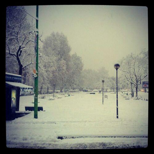 Snow Neve Milan