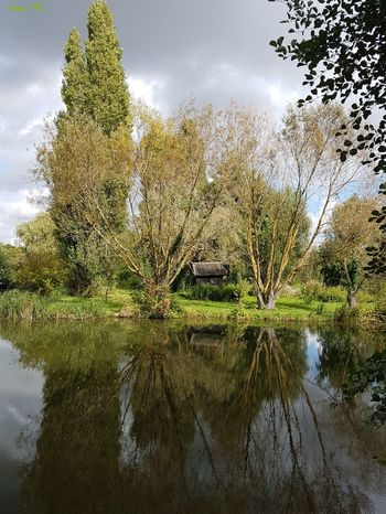 Reflection Nature Outdoors Tree Water Sky Cloud - Sky Day Growth Freshness Beauty In Nature Landscape Taking Photos Water Reflection Reflections And Shadows Bourges, France Walking Around Marais France River Riverside Plant Mirroreffect Branch Leaves