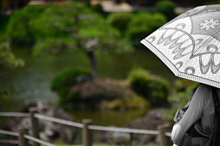 Woman With Umbrella Standing On Footbridge