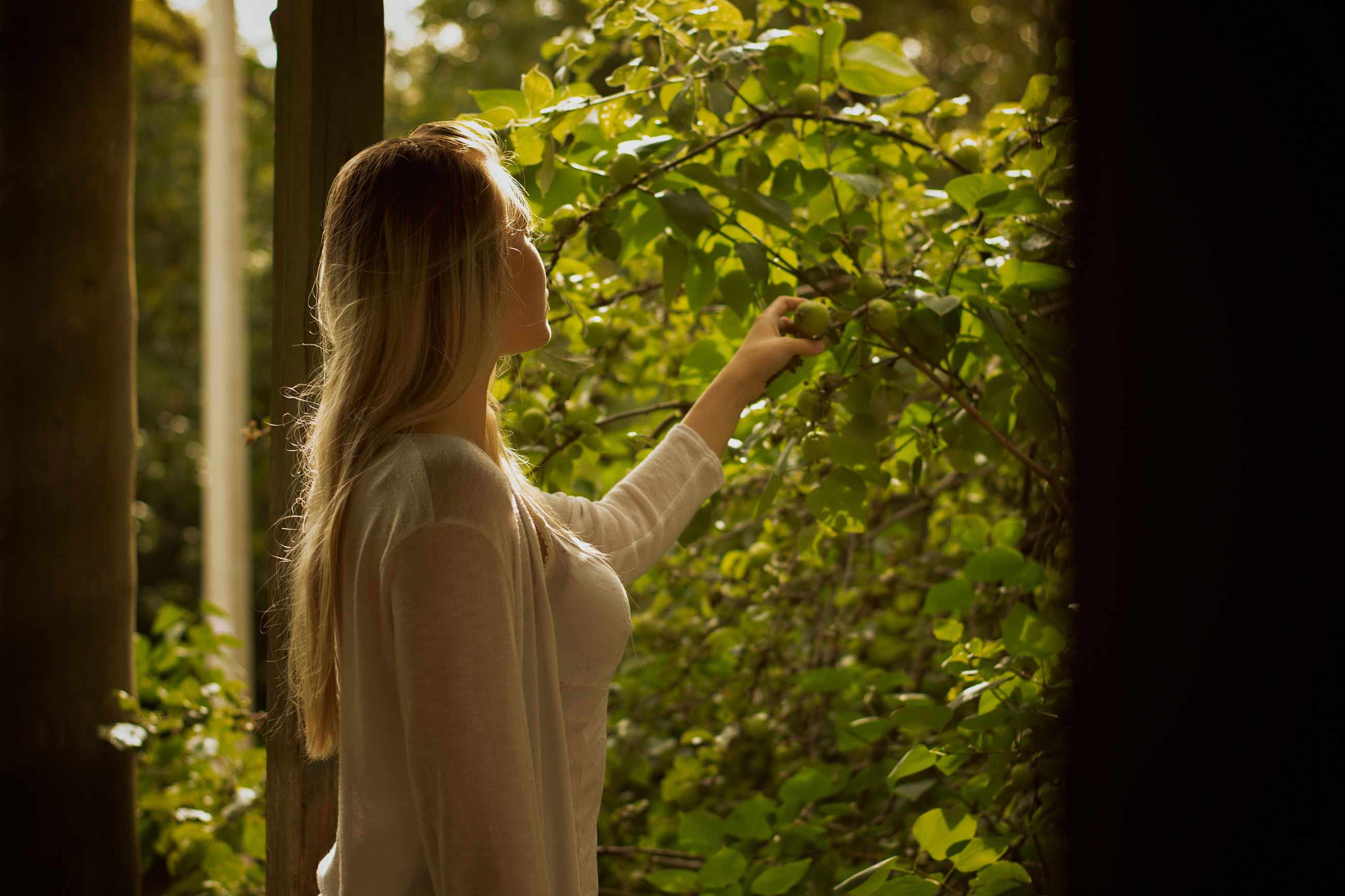 one person, plant, women, blond hair, adult, real people, hair, tree, growth, waist up, nature, hairstyle, lifestyles, standing, day, rear view, casual clothing, leisure activity, holding, outdoors