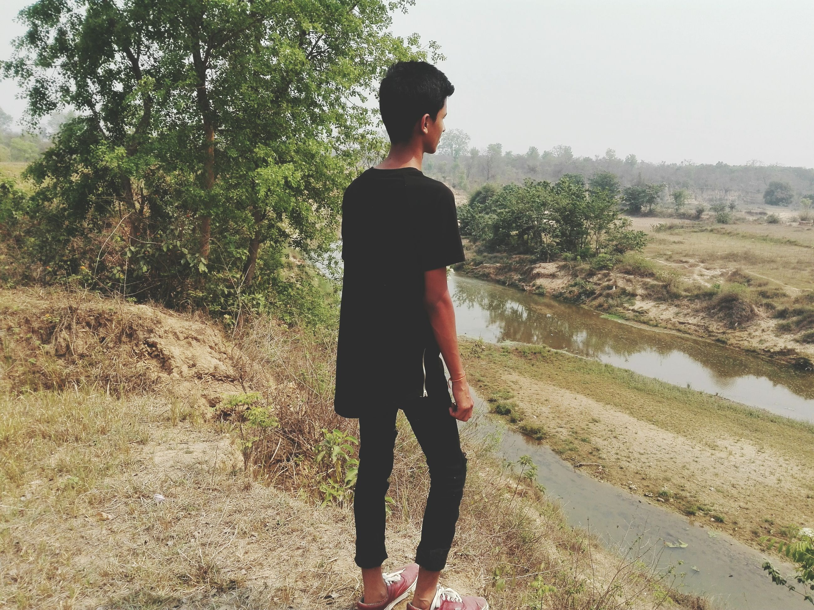 lifestyles, rear view, real people, one person, tree, leisure activity, full length, standing, day, outdoors, nature, growth, childhood, beauty in nature, technology, people
