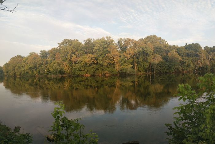 Trees River Water Sunset Reflection Tree Lake Nature Outdoors Sky Multi Colored Day No People Tennesse Scenics Nature Tree Growth Tranquility Landscape Plant