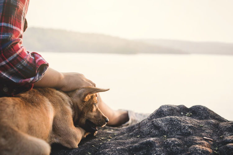 Midsection of boy with dog relaxing on rock formation by lake