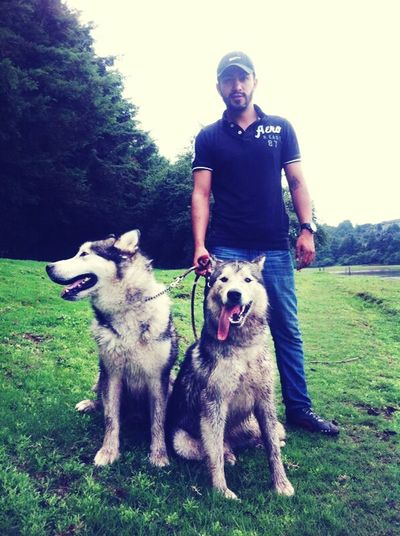 my wolfs Funny Dogs Let's Go Out Self Portrait