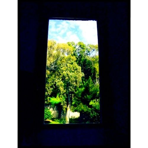 If you open the window I'm free from the words, that are hard to come out.♡ 🐸 Likeforlike Recent4recent Likesforlikes Spamforspam Followback Follow4follow R4r Rowforrow Likeforlikes Followme Recentforrecents Followforfollow Sfs Recentforrecentalways L4l Spam Spam4spam Likeforfollow Like4likes Selfie Follow Recent4recents S4S Recent Lfl f4f 20likes giardinosegreto giardinosegreto,