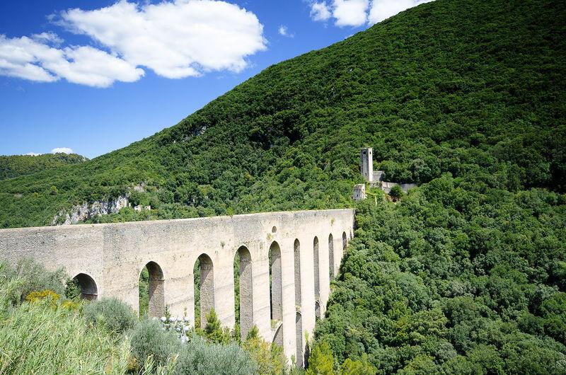 Arch bridge on green landscape against sky