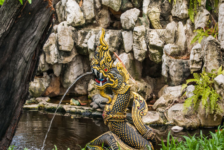 Animal Themes Day Dragon Thai King Of Nagas Mammal Naga No People Outdoors Serpent Dra Water