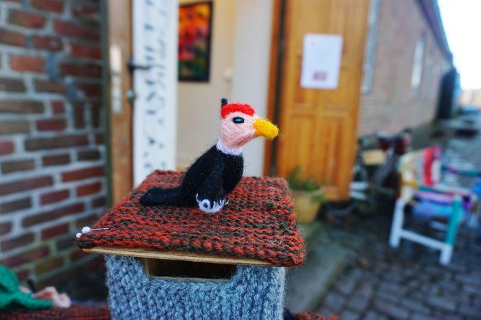 knitting art EyeEm Selects Knitting Knitted  Knitting Wool Knitting Project Knittingproject Knitting Art Art Arts Culture And Entertainment ArtWork Art And Craft Art, Drawing, Creativity Creativity Gamlebyen Norway Fredrikstad Bird DIY
