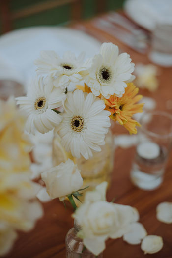 Close-up of white flowering plants on table