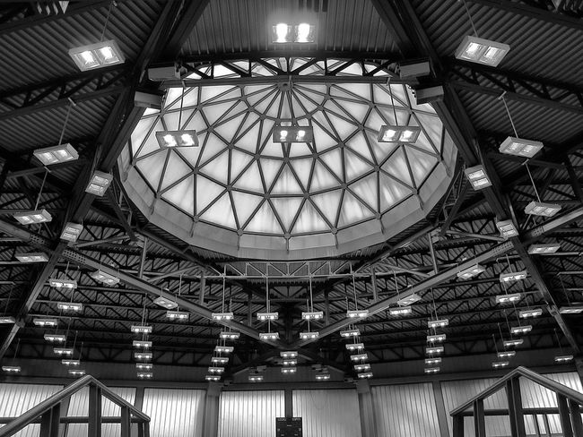 Modern Architecture Sporting Center Volleyball Arena Downtown😊☀️ Dome Engineering Florence Sport Arena Structures