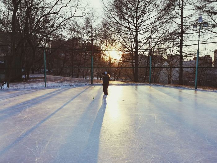Ice scating and holidays EyeEm Gallery EyeEm Best Shots EyeEm Best Shots Valysh_Tina 2018 In One Photograph Tree Ice Rink Full Length Ice Hockey Cold Temperature Winter Sport Winter Sport Sky Hockey Skating Ice Hockey Stick Ice Skate Roller Skate Ice-skating Sports Venue Redefining Menswear Moms & Dads