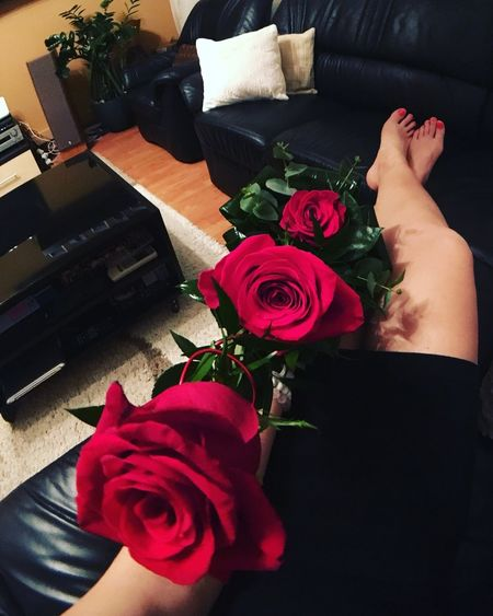 RomanticMoment Perfect Moment Rosejustforme Flowerphotography Rosephotography BigRose Frommylove Roses🌹 Love ♥ Flower Collection Flower Rosé Flowering Plant Plant Rose - Flower Beauty In Nature Fragility Red