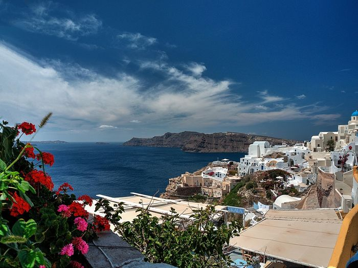 Accomodations Agean Flowers Greece Landscape Oia Santorini Tourism View
