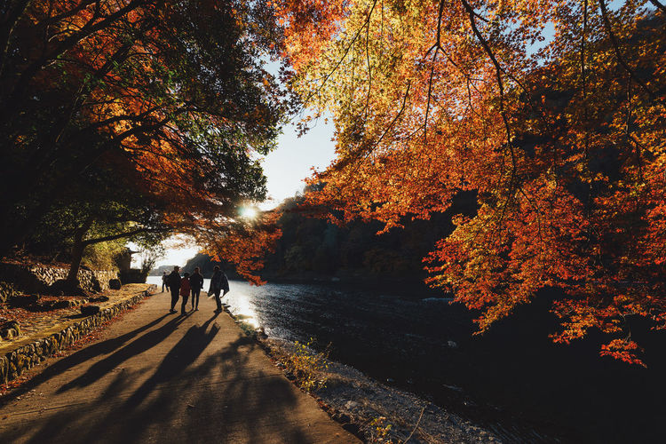 People on street by river in park during autumn