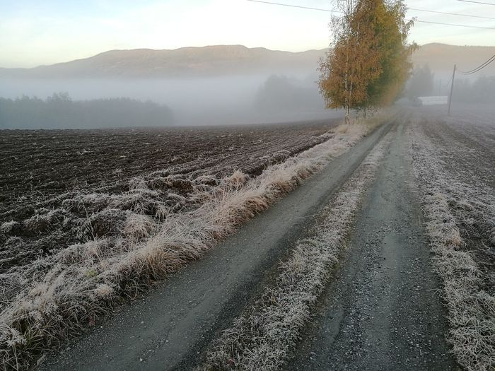 Fog Weather Road Tranquil Scene Beauty In Nature Tranquility Mist The Way Forward Field Non-urban Scene Outdoors Landscape No Filter Norway Winter Wintertime Scenics Nature Belowzero