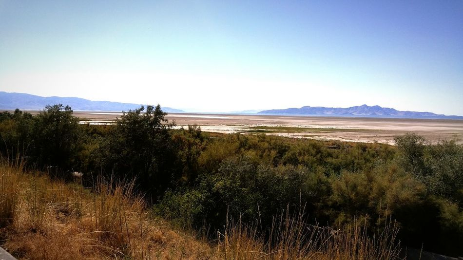 Landscape Sand Desert Water Scenics Nature Arid Climate Mountain Sky Beauty In Nature Clear Sky GreatSaltLake Beautiful Nature EyeEmNewHere EyeEm Selects Backgrounds Day Outdoors