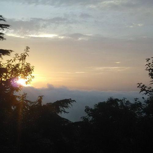 Shimla Random_click :v