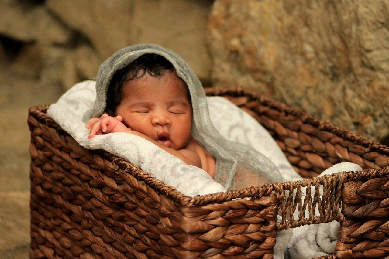real people, cute, blanket, basket, sleeping, baby, childhood, one person, comfortable, newborn, day, indoors, close-up, people