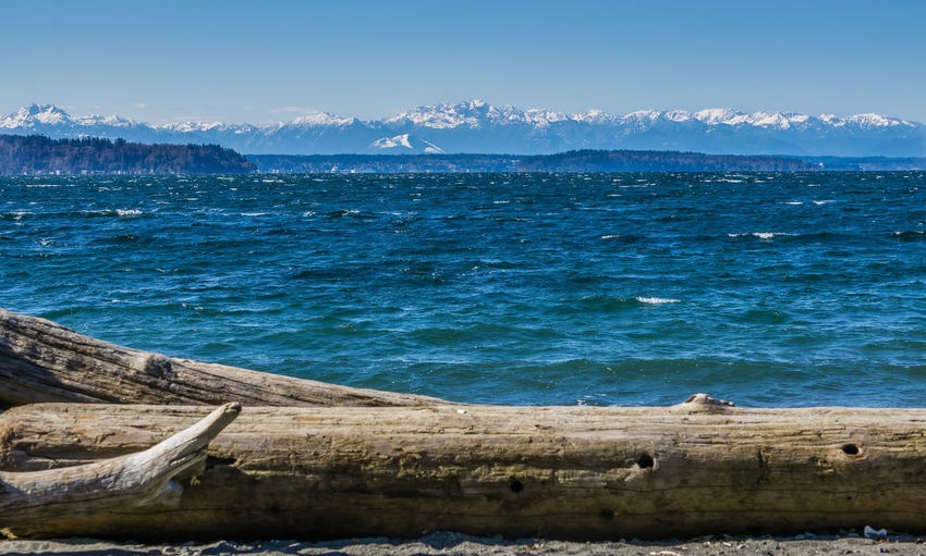 Windy sea and mountains. Sky Water Sea Scenics - Nature Mountain Beauty In Nature Tranquility Tranquil Scene Blue Nature Day No People Mountain Range Land Idyllic Outdoors Non-urban Scene Cloud - Sky Remote Snowcapped Mountain Olympic Mountains Puget Sound Landscape Nature