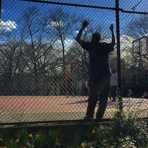 Basketball Adult Adults Only Basketball Day Fence Fences Full Length One Man Only One Person Outdoors People Playing Real People Sky Spring Standing Tree