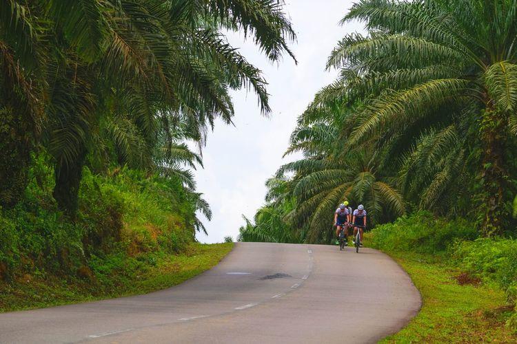 Men Riding Bicycle On Road