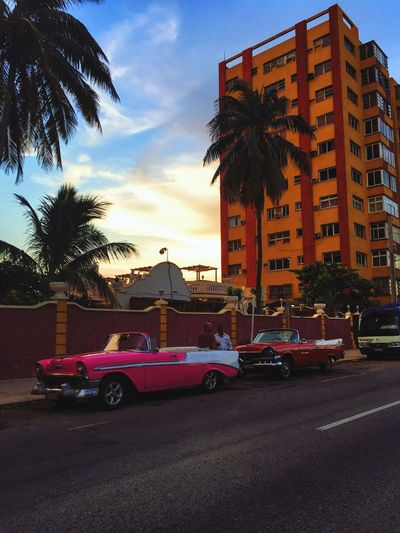 Vacations No People Transportation Car Palm Tree Architecture Building Exterior Built Structure Mode Of Transport Sunset Cloud Tree Sky Land Vehicle Outdoors Cloud - Sky Moody Sky Dramatic Sky Cuba Cuban Cuba Car Cuban Cars Vintage Vintage Photo Vintage Cars