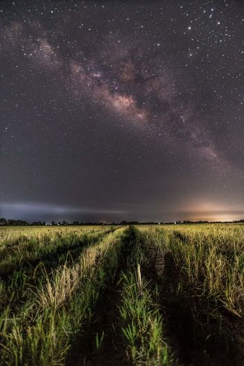Astronomy Beauty In Nature Field Galaxy Grass Green Color Idyllic Infinity Landscape Majestic Milkyway Nature Night No People Non-urban Scene Outdoors Remote Scenics Sky Space Star Star - Space Star Field Tranquil Scene Tranquility