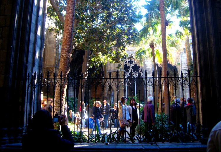 Claustro de la catedral de Barcelona !! People And Art Catedral Claustro