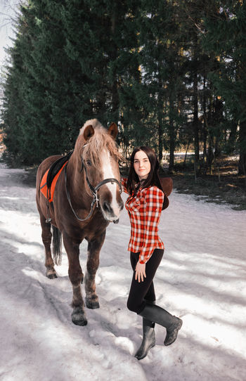 Full length portrait of a horse