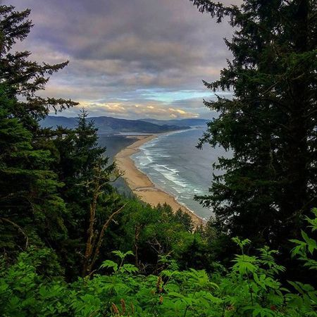 A view of the Oregon coastline from the Cape Lookout trailhead. Oregoncoast Oregonexplored Capelookout Beach Coastline Coast Ocean Sea Forest Clouds Hiking Hikingadventures Golivexplore Oregonnw PNWonderland PNW Pacific Pacificnorthwest Pacificocean BestOfOregon
