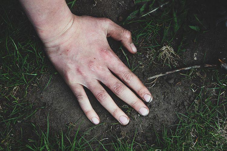 Close-up of hand on ground