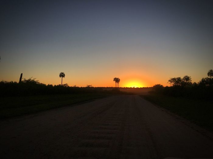 Sunset 🌅 Sunset Popckorn The Way Forward Nature Beauty In Nature Clear Sky Transportation Tranquility Road No People Scenics Silhouette Field Tree Tranquil Scene Landscape Outdoors Sky Sun Sunrise Day Roadtrip Nature Argentina Entre Rios