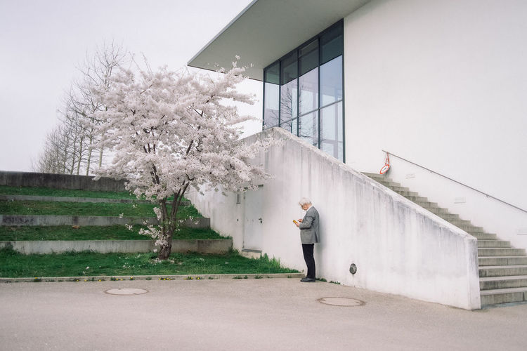 Cherry Blossom Time Cherry Blossoms Hanami Nature People Sakura Urban Urban Landscape 桜 Telling Stories Differently Envision The Future The Street Photographer - 2016 EyeEm Awards Snap A Stranger