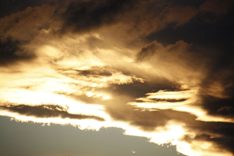 Cloud - Sky Sky Beauty In Nature Scenics - Nature Tranquility Tranquil Scene Sunset Low Angle View Nature Idyllic No People Dramatic Sky Sunlight Cloudscape Outdoors Backgrounds Full Frame Storm Orange Color Meteorology Bright